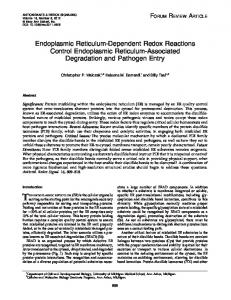 Endoplasmic Reticulum-Dependent Redox Reactions Control