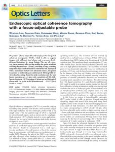 Endoscopic optical coherence tomography with a ... - OSA Publishing