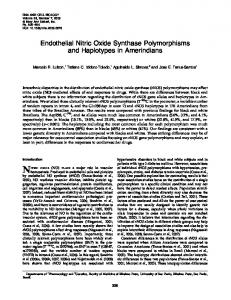 Endothelial Nitric Oxide Synthase Polymorphisms and Haplotypes in ...