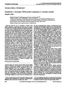 Endothelin-1 decreases CD36 protein expression in vascular smooth ...