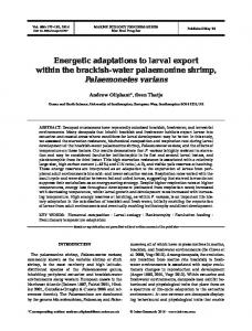 Energetic adaptations to larval export within the brackish-water ...