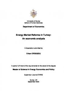 Energy Market Reforms in Turkey: An economic
