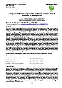 Energy valorization of sludge from the wastewater treatment plant of ...