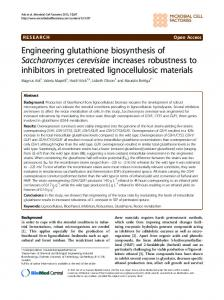 Engineering glutathione biosynthesis of Saccharomyces cerevisiae ...