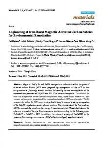 Engineering of Iron-Based Magnetic Activated Carbon Fabrics ... - MDPI