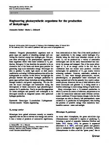 Engineering photosynthetic organisms for the ... - Springer Link