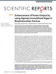 Enhancement of Power Output by using Alginate Immobilized Algae in
