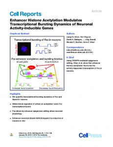 Enhancer Histone Acetylation Modulates