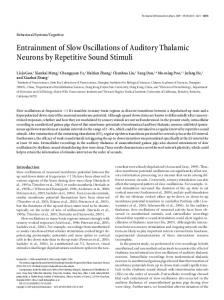 Entrainment of Slow Oscillations of Auditory Thalamic Neurons by ...