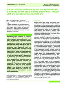 Entry of Bacillus anthracis spores into epithelial ... - Wiley Online Library