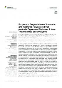 Enzymatic Degradation of Aromatic and Aliphatic ...
