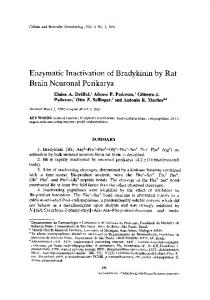 Enzymatic inactivation of bradykinin by rat brain ... - Springer Link