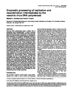 Enzymatic processing of replication and recombination intermediates ...
