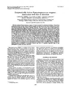 Enzymatically Active Peptostreptococcus magnus - Journal of Clinical ...