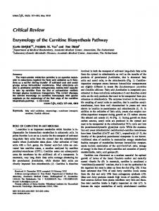 Enzymology of the carnitine biosynthesis pathway - Wiley Online Library