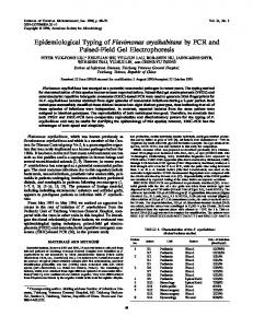 Epidemiological Typing of Flavimonas oryzihabitans by PCR and ...