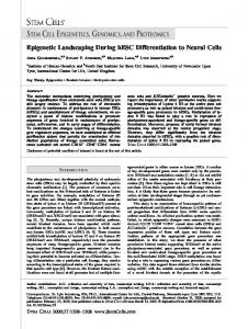 Epigenetic Landscaping During hESC ... - Wiley Online Library