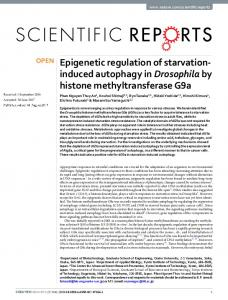 Epigenetic regulation of starvation-induced autophagy ... - CyberLeninka