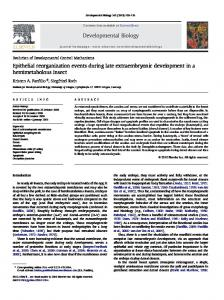 Epithelial reorganization events during late extraembryonic ... - Core