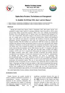 Equine limbs Fractures: The Incidence and Management
