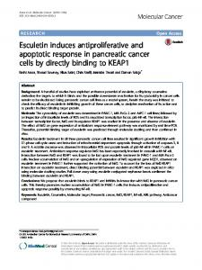 Esculetin induces antiproliferative and apoptotic ... - Springer Link