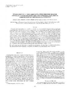 Establishment of a three-dimensional human prostate ... - Springer Link