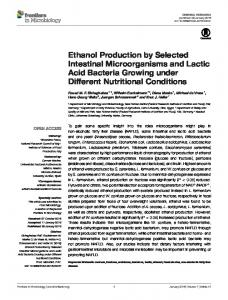 Ethanol Production by Selected Intestinal ... - Semantic Scholar