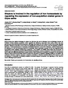 Ethylene is involved in the regulation of iron homeostasis by ...