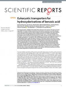 Eukaryotic transporters for hydroxyderivatives of benzoic acid