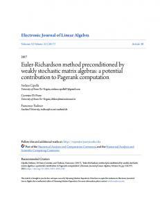 Euler-Richardson method preconditioned by weakly stochastic matrix