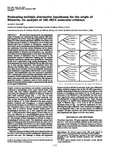 Evaluating multiple alternative hypotheses for the origin of Bilateria ...