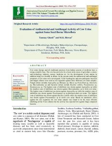 Evaluation of Antibacterial and Antifungal Activity of Cow Urine against ...
