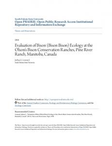 Evaluation of Bison (Bison Bison) Ecology at the ... - Open PRAIRIE