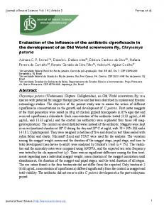 Evaluation of the influence of the antibiotic