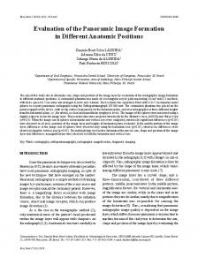 Evaluation of the Panoramic Image Formation in