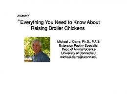 Everything You Need to Know About Raising Broiler Chickens