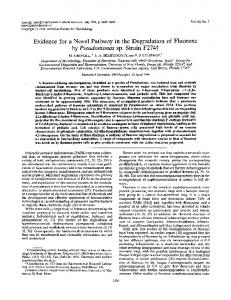 Evidence for a novel pathway in the degradation of fluorene by ...