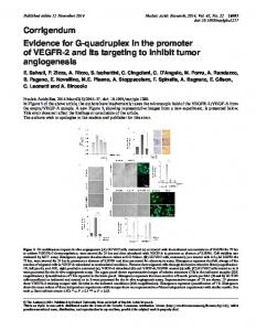 Evidence for G-quadruplex in the promoter of VEGFR-2 and its