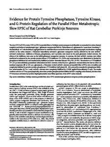 Evidence for Protein Tyrosine Phosphatase, Tyrosine Kinase, and G ...