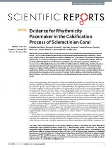 Evidence for Rhythmicity Pacemaker in the