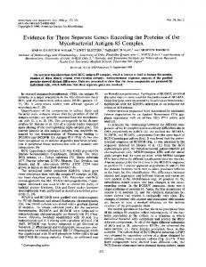 Evidence for three separate genes encoding the proteins of the ...