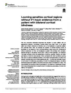 evidence from a patient with bilateral cortical ... - Beatrice de Gelder