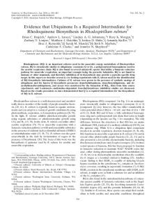 Evidence that Ubiquinone Is a Required Intermediate for ...