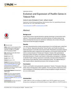 Evolution and Expression of Paxillin Genes in