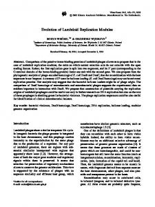 Evolution of Lambdoid Replication Modules - Springer Link