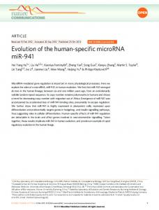 Evolution of the human-specific microRNA miR-941 - Semantic Scholar