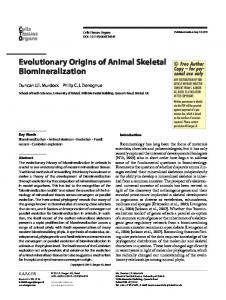 Evolutionary Origins of Animal Skeletal Biomineralization