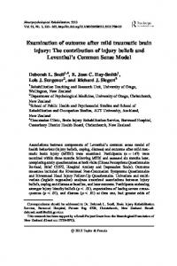 Examination of outcome after mild traumatic brain injury