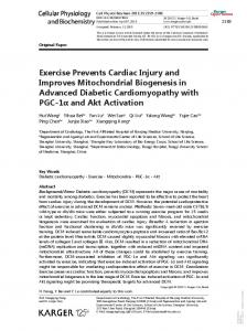 Exercise Prevents Cardiac Injury and Improves Mitochondrial