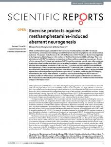 Exercise protects against methamphetamine-induced ... - Nature